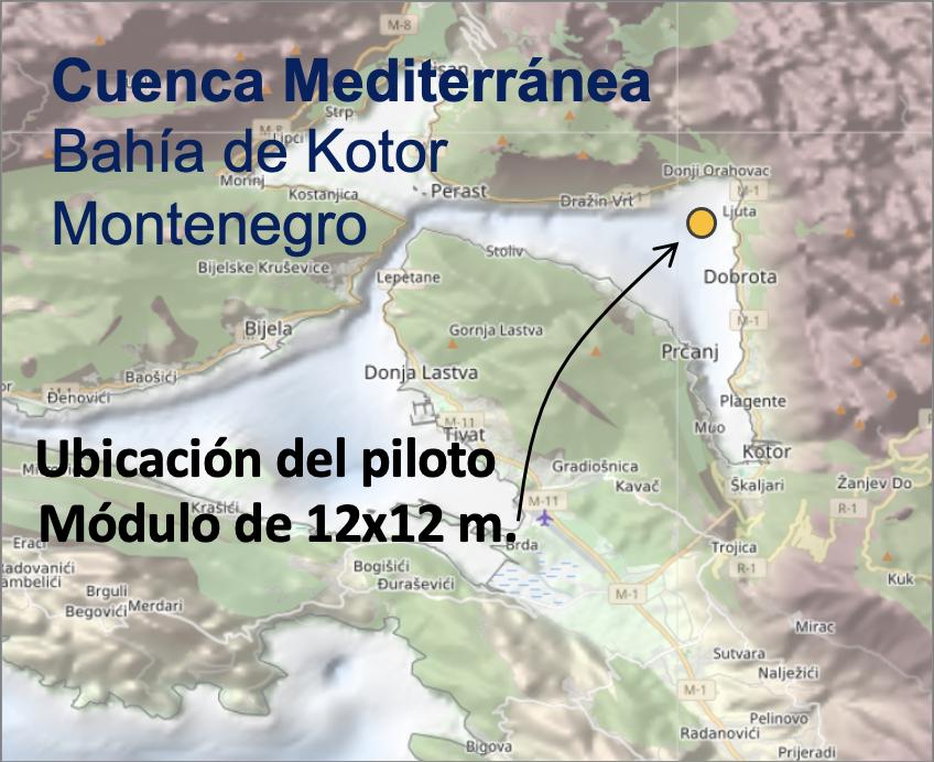 Piloto 4